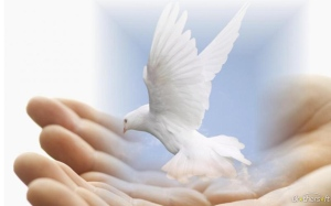 Dove of Peace, Bing